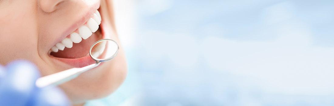 odontologo y caracteristicas